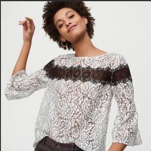 LOFT top size MP white black lace medium  petite